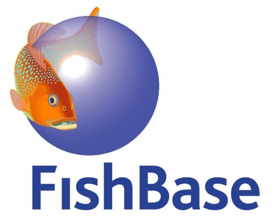 2017_01_06_FishBase_New_FBLogo1_1cd6d1fea7
