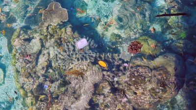 Aerial view of plastic floating over corals, Maldives. Credit: ARC CoE for Coral Reef Studies/ Kathryn Berry