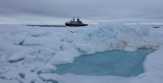 20140715_Polarstern86_Arktis_2014_Aurora_015_SArndt_klein