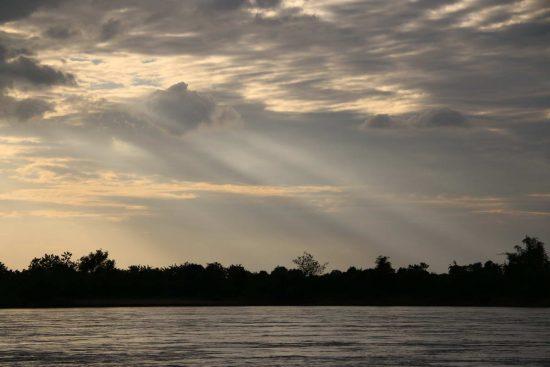 2018_04_26_Mekong-Delphine_c_Lee Poston_WWF-Greater Mekong