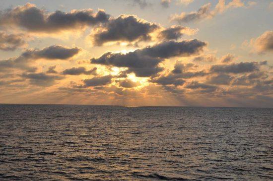 2019_01_07_Pazifik_graphics-Gemelas_Seamount_L_Madin_GPS-DSC_4805_510973
