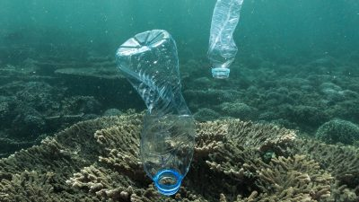 Plastic Pollution in Oman, Gulf or Arabia. Credit: Tane Sinclair-Taylor @Tanetangaroa