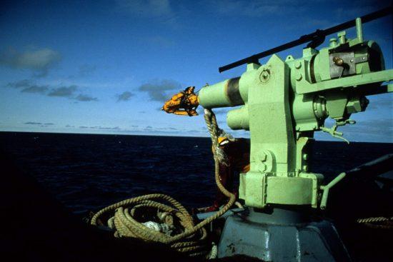 Whaling07_Mark Votier_klein