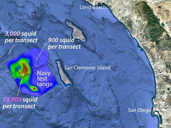 whale-map3_klein