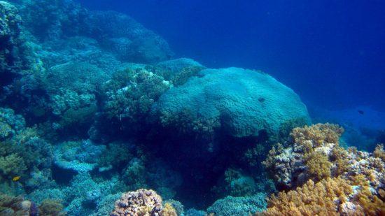 1_hughen-reef