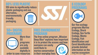 Ecology Programs, less plastic and a free online environment program