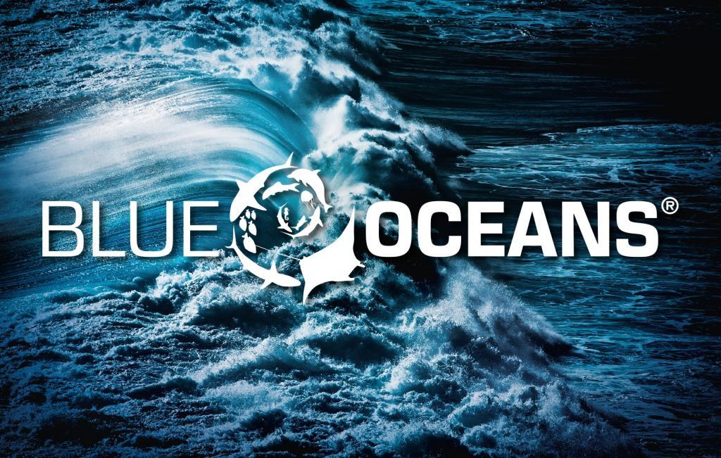 Mission Deep Blue becomes Blue Oceans