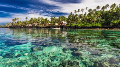 Coral reef lagoon with palm trees on the beach, south side of Upolu, Samoa Islands