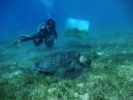 Olga und Schildkröte