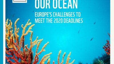 Meeresschutz_WWF-Protecting-Our-Ocean-1
