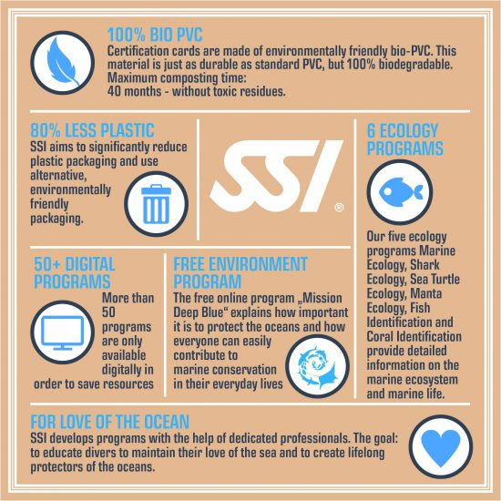 Infographic_SSI_Environment