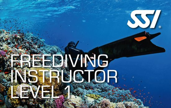 New Freediving Instructor Trainer Course
