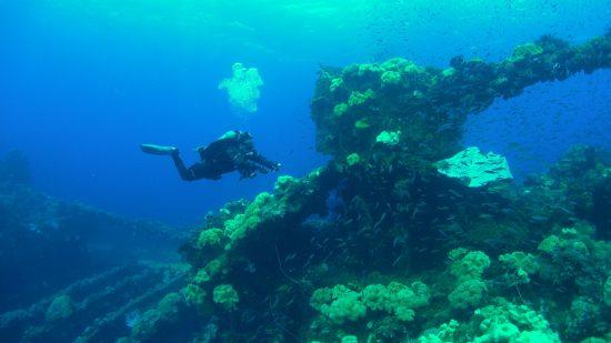 Diving in Chuuk Lagoon