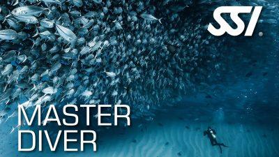 SSI Recognition Level Master Diver