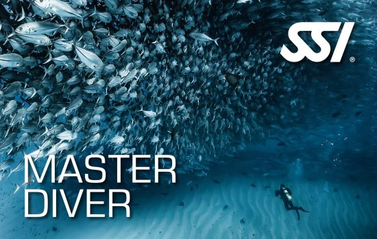 SSI Recognition Level Master Diver