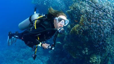 Learning to scuba dive will change your life