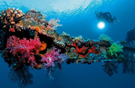 Wreck dives in Truk Lagoon are a great experience